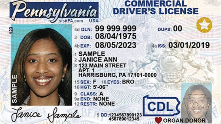 buy real drivers license online